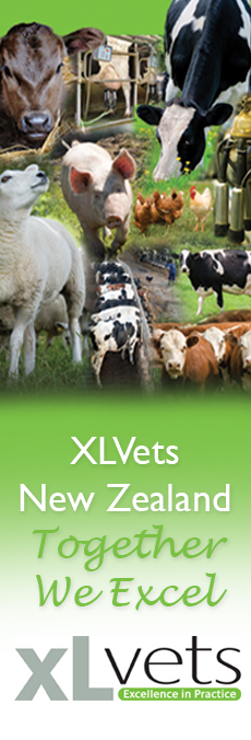 XLVets New Zealand - Together we Excel